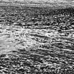 """Rock Shoreline 1"" by SkipNall"