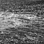 """Rocky Shoreline 2"" by SkipNall"