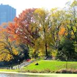 """Autumn in Central Park, New York City"" by biriart"