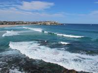 Bondi Waves