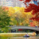 """Autumn fun in Central Park, New York City"" by biriart"