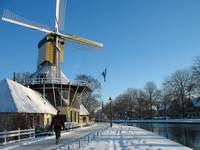 Winter walk by windmill.