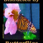 """impasto-600-butterfly-dsc04142-distracted"" by quotes"
