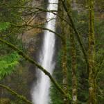"""Multnomah Falls"" by aRTPhotograph"