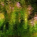 """Giverny spirit XV"" by Woodsman"