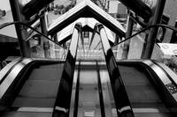Dual Escalators