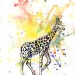 """Giraffe Walking"" by idillard"