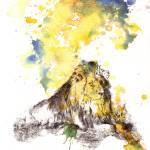 """""""Lion in Splatter"""" by idillard"""