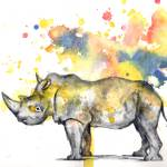 """Rhinoceros in Splatter"" by idillard"
