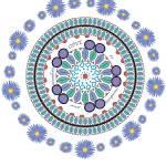 """""""Blue cirles"""" by Gabriela-Romaria"""