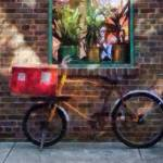 """Delivery Bicycle Greenwich Village"" by susansartgallery"
