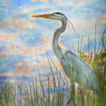 """great blue heron painted 4"" by nancielaing"