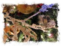 Christmas Tree Ornaments, Frosty Branch, Gold Ball