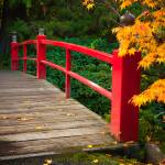 """Japanese Bridge"" by Inge-Johnsson"