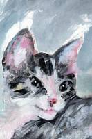 Kitten Painting My Buster Face Close up by Ginette