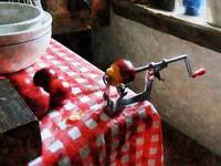 Apples and Apple Peeler