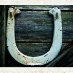 """U"" by MarinaPhotography"