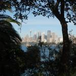 """Sydney view from behind the bush"" by magicmoments"