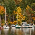 """Autumn in Fulford Harbour"" by Larissa"