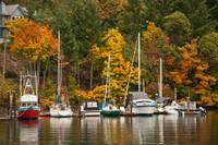 Autumn in Fulford Harbour