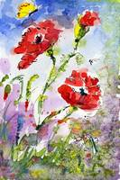 Poppy Flowers and Bees Watercolor by Ginette