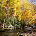 """Autumn On The Little River"" by Lorraine_Sommer"