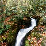"""Lower Huskey Branch Falls"" by Lorraine_Sommer"