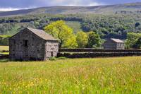Summer Meadow, Wharfedale - The Yorkshire Dales