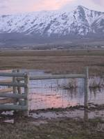 Sunset over marsh with mountains and fence
