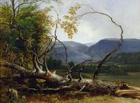 Study from Nature, Stratton Notch, Vermont, 1853