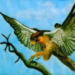 """Lanner Falcon"" by artofsarahcyr"