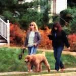 """Women Walking Dog"" by susansartgallery"
