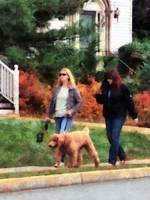 Women Walking Dog