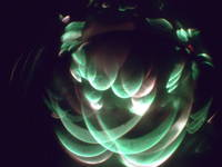 Easter eggs green inverted