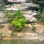 """Rock Wall at Lake"" by TKMaurice"