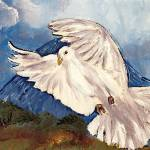 """Dove of Peace"" by arlen"