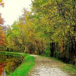 """a winding stone path along a canal on a fall day"" by Swmr152974"