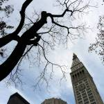 """Clock Tower, Madison Square Park, NYC"" by karinm"