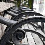 """Park Bench at Madison Square Park, NYC"" by karinm"