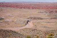 The Painted Desert  8042