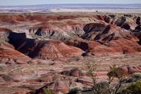 The Painted Desert  8062