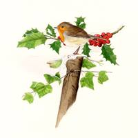 xmas robin  post