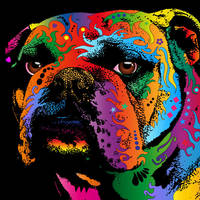 """Bulldog"" by ModernArtPrints"