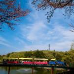 """Fun Park Train Ride, Japan"" by mikeleecs"