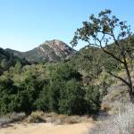 """Malibu Creek State Park"" by nobodyhikesinla"