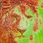 """lionhead"" by csjones"