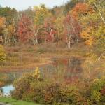 """""""Bushkill in the Fall"""" by campsanity"""