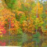 """Late Autumn Reflections At Turkey-Foot Lake 254"" by photographybydonna"