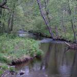 """""""Spring time on the Bushkill Creek"""" by campsanity"""