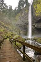 Latourell Falls Waterfall Columbia River Gorge Ore